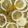 Elderflower syrup la Métairie des Songes