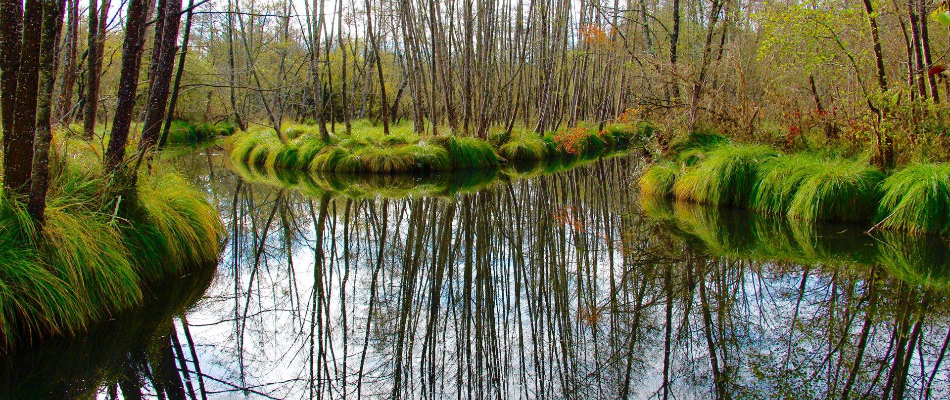 lac à grolejac